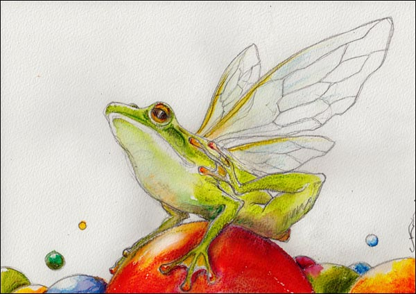 illustrations winged frog
